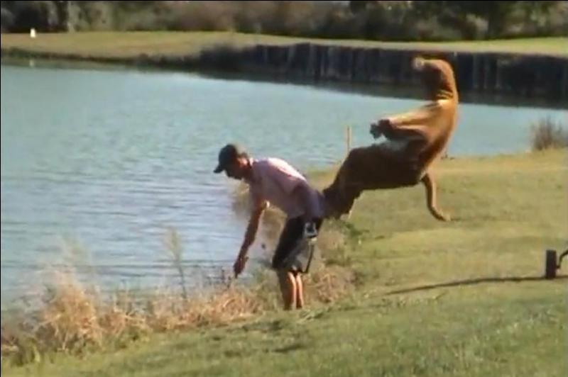 C'est plus fort que moi, il faut que je saute, alors ça donne un sketch bondissant !