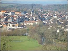 Capitale de la lutherie, Mirecourt est une ville lorraine située dans le département ...