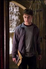 On apprend par le professeur McGonagall que Harry a l'ambition de devenir...