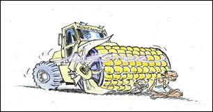 Dans un agrosystème, par quels moyens peut-on améliorer les rendements agricoles ?