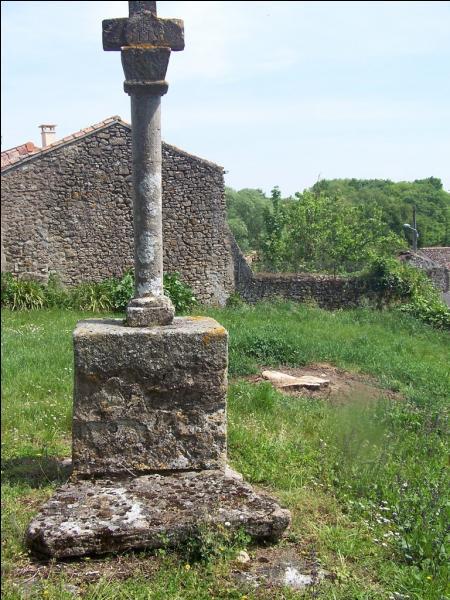 Dans le temps, en Deux-Sèvres, que signifiait le verbe pegnoter?