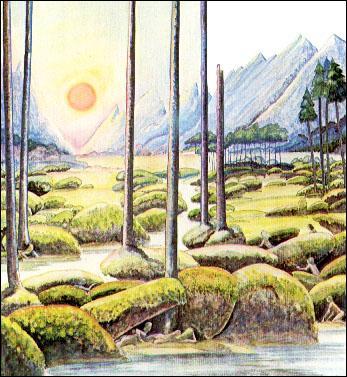 Quelle race suivit Oromë vers le Valinor ?