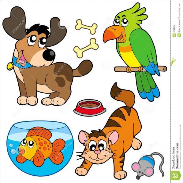 Quel animal entre dans le jeu de tarot ?