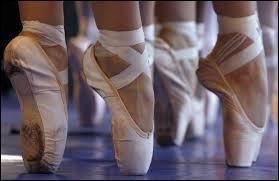 Tous les danseurs et toutes les danseuses rêvent de les avoir, ce sont :