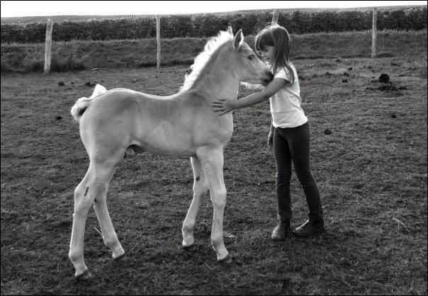 Quelle couleur avait le petit cheval de Paul Fort ?