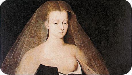 Depuis l'époque des Mérovingiens les maîtresses royales vivaient dans l'ombre. Charles VII, chétif et mélancolique, va se transformer au contact d'... et, pour la première fois dans l'histoire de France, il y aura une favorite officielle à la cour.