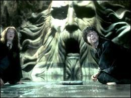 Contre quoi Harry va-t-il se battre dans la Chambre des Secrets ?