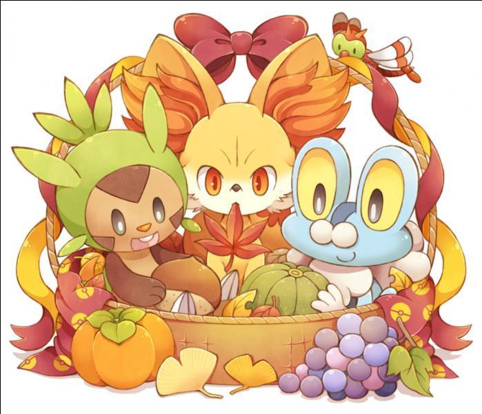 Pokémon : 6ème génération