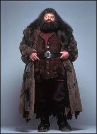 Qui est Rubeus Hagrid ?
