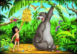 De quel ouvrage s'inspire ce célèbre dessin animé des studios Disney ?