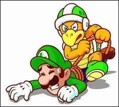 Peut-on jouer avec Luigi ? (toujours dans le 2)