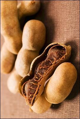 Les Malgaches aiment consommer la pulpe acidulée de ce fruit en gousse. Portant aussi le nom d'un petit singe d'Amérique du Sud, ce fruit est le :