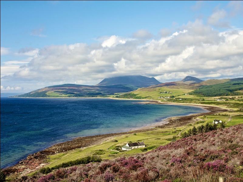 """Sur mes landes de genêts, survolées par la grouse, on a parfois l'impression d'entendre William Wallace crier """"Freedom"""" !"""