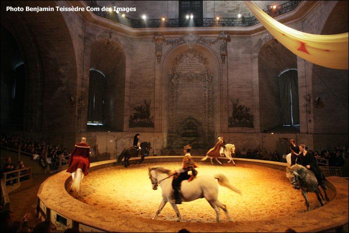 Picardie. Musée vivant du cheval. Musée Condé !