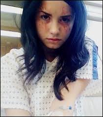 En quelle année Demi Lovato joue le rôle de Hayley May dans la série à succès : '' Grey's Anatomy'' ?