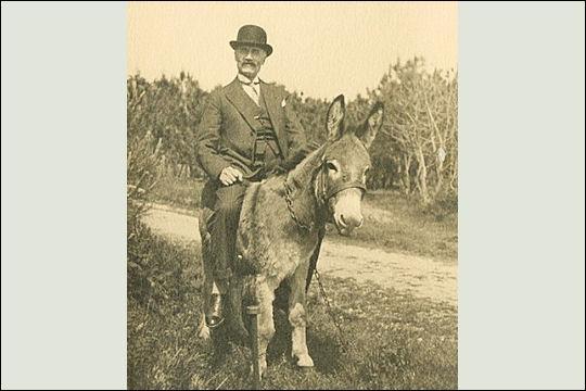 Comment va cet homme sur son âne ?