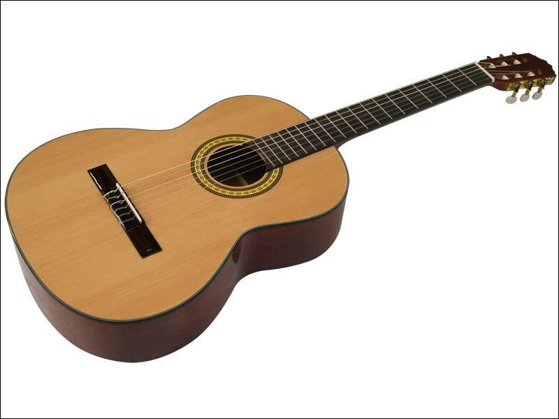De quelle famille fait partie la guitare ?