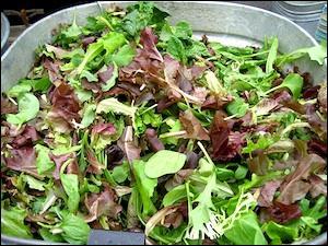 Le défilé des salades commence : Cloclo et Enilora se sont partagé les tâches, Enilora a fait la vinaigrette et Cloclo a remué la salade ! C'est ...
