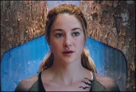 Tris est divergent, le test indiquait quelles factions ?