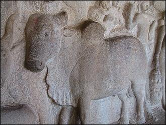 Ce bas-relief représente la Vache sacrée de Mamallapuram en ....