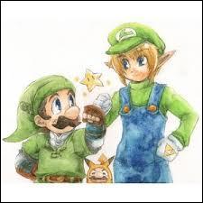 Link et Luigi ont un point qui les font se ressembler : lequel ?