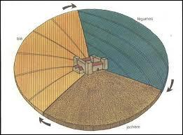 Quelle nouvelle technique de culture a permis d'augmenter considérablement le rendement agricole ?