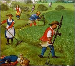 La vie misérable des paysans était dictée par le calendrier agricole et les saisons. Combien d'heures devaient-ils travailler aux champs dans une journée pour espérer survivre ?
