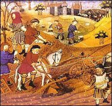Le paysan n'était pas propriétaire de la terre qu'il cultivait. Comment s'appelait la terre agricole que le paysan louait au seigneur ?
