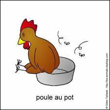 Si vous menez les poules  pisser ..Que faites-vous ?