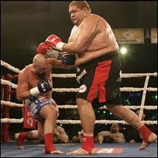 En boxe anglaise professionnelle, quelle catégorie correspond aux sportifs les plus légers ?