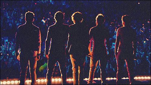 Quel est le nom de la fan base des One Direction ?