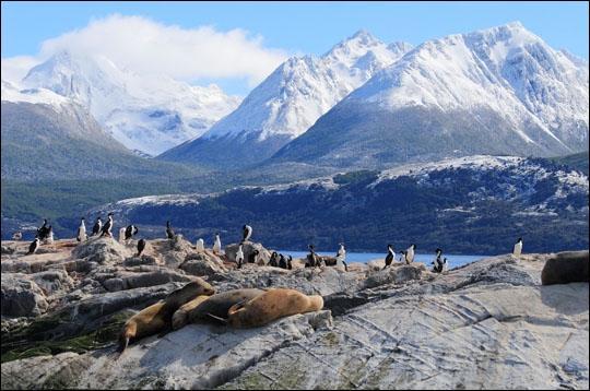 Si vous avez choisi cette destination de rêve qu'est la Terre de Feu, pour partir en voyage, visiter Ushuaïa et Rio Grande, voir le glacier Martial, dans quel pays serez-vous ?
