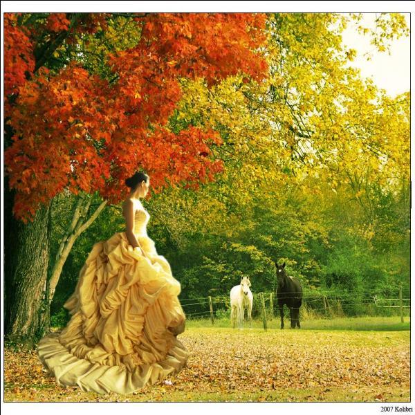 """Dans quel poème de Lamartine écrit-il """" Salut, derniers beaux jours ! le deuil de la nature Convient à la douleur et plaît à mes regards ! """" ?"""