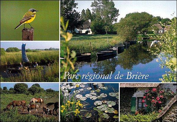 Autrefois, on récoltait la tourbe du marais de la Brière. Aujourd'hui, on y navigue encore grâce à une barque appelée 'chaland'. Vous pourrez y admirer la faune et la flore, riches et remarquables, en vous rendant au nord de l'estuaire de la Loire, dans le département de :