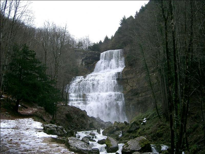 Cet affluent de l'Ain s'engage dans une reculée et parcourt 300 mètres de dénivelé sur 3 km en constituant les cascades du Hérisson !