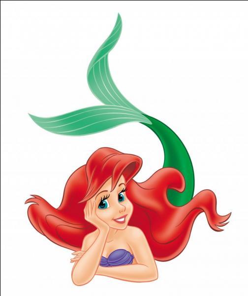 Comment se nomme cette princesse Disney ?