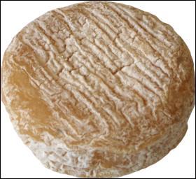 Voici un fromage de chèvre de la Vallée du Rhône :