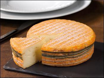 Voulez-vous un petit morceau de fromage ?