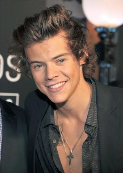 Comment s'appelle le beau-père de Harry ?