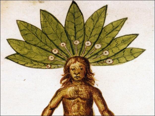 Durant l'antiquité, on pensait que certaines plantes permettaient de soigner la mélancolie. Quelles étaient ces plantes ?