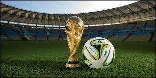 Combien de pays participent à cette coupe du monde ?
