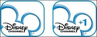 Existe-t-il une chaîne Disney Channel +2 ?