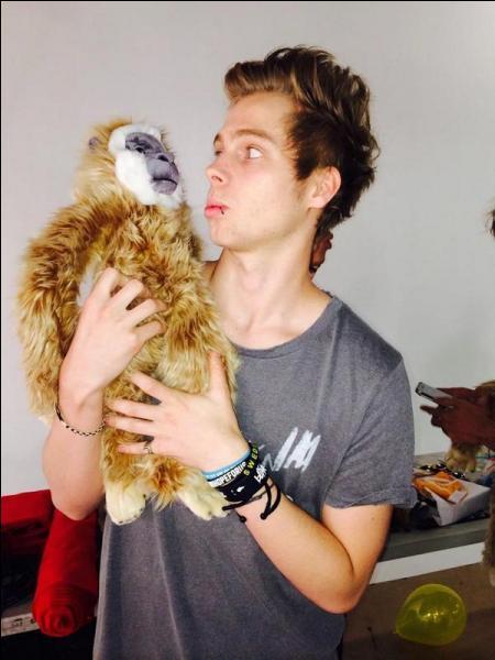Quelle est la glace préférée de Luke ?