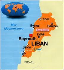 Quel arbre se trouve sur le drapeau du Liban ?