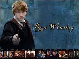Quel rôle exerce Ron dans Harry Potter 6, quand il entre dans l'équipe ?
