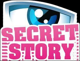 Quel secret ne fait pas partie de Secret Story 8 ?