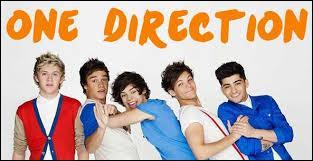 J'ai été à un moment fan des One Direction. Qui sont leurs fans ?