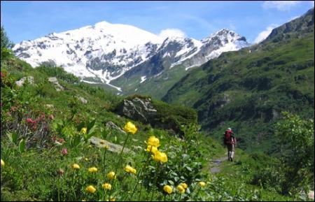 """Fans de randonnées, vous dites """"Que la montagne est belle"""" comme l'a chanté : (lien pour clip)"""