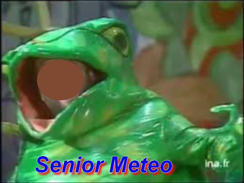 Qui se trouve dans la grenouille ?