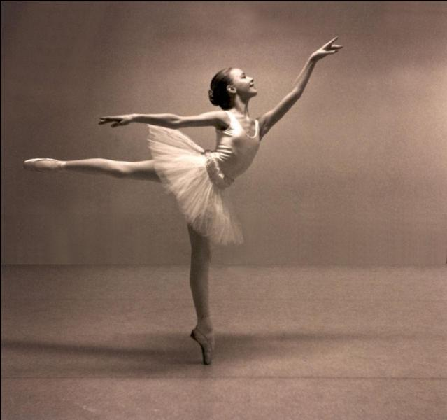 Quel pas de danse se rapporte à un animal en classique ?